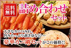 送料無料 詰め合わせセット 大きなカニつみれ・旨みたっぷり剥き身など・・・豪華カニ鍋セットがこの価格!!